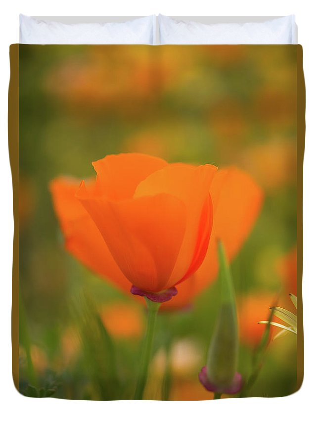 Wildflowers Duvet Cover featuring the photograph Poppy by Roger Mullenhour