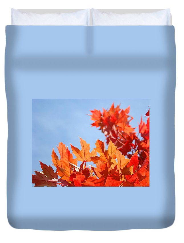 Autumn Duvet Cover featuring the photograph Popular Autumn Art Red Orange Fall Tree Nature Baslee Troutman by Baslee Troutman