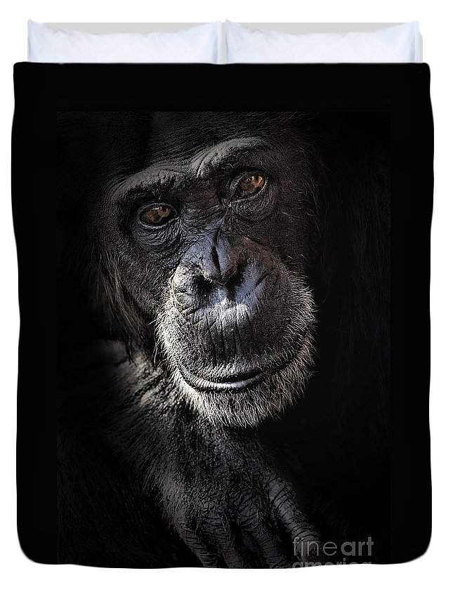 Chimp Duvet Cover featuring the photograph Portrait Of A Chimpanzee by Sheila Smart Fine Art Photography