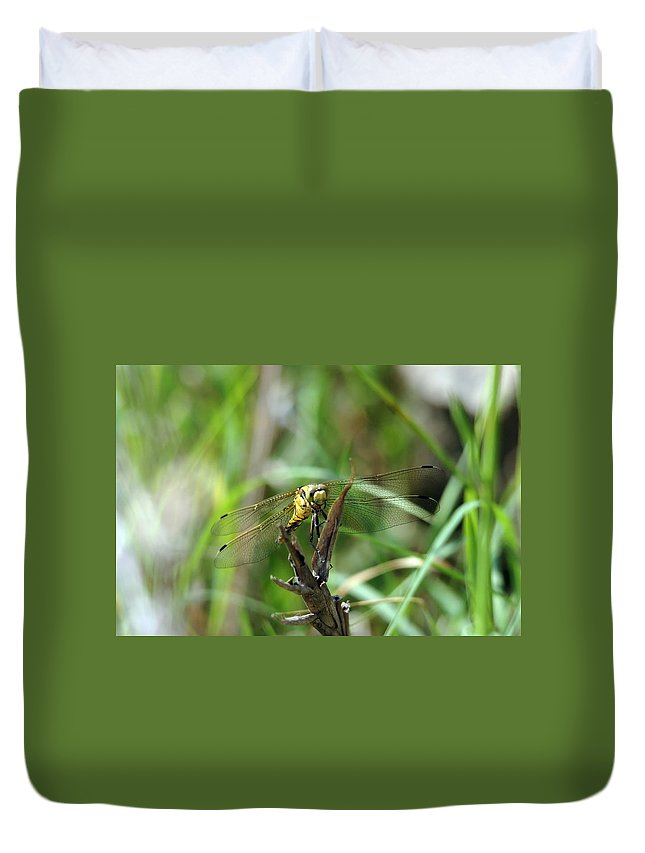 Dragonfly Duvet Cover featuring the photograph Portrait Of A Dragonfly by Cliff Norton