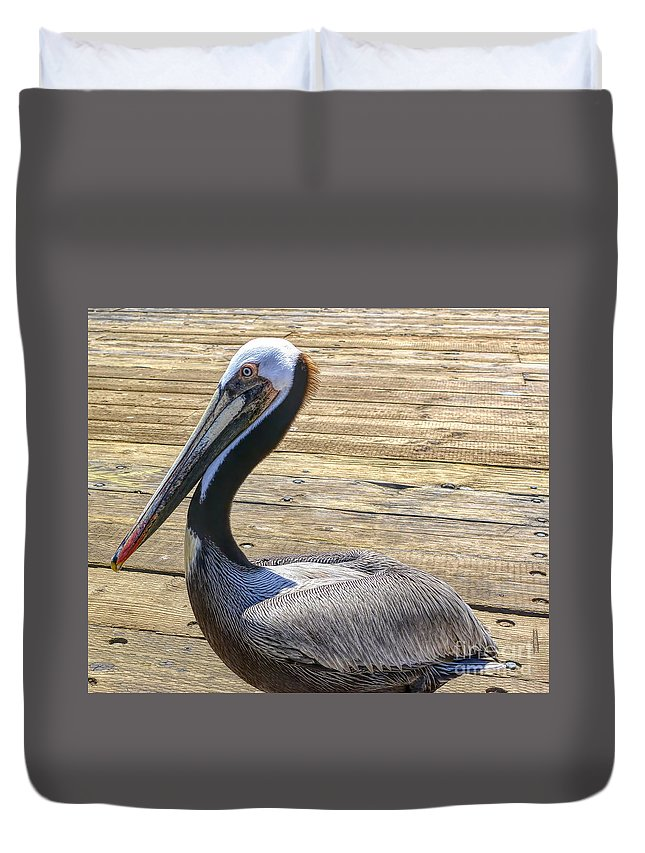 California Duvet Cover featuring the photograph Portrait Of A Pelican by Joe Lach