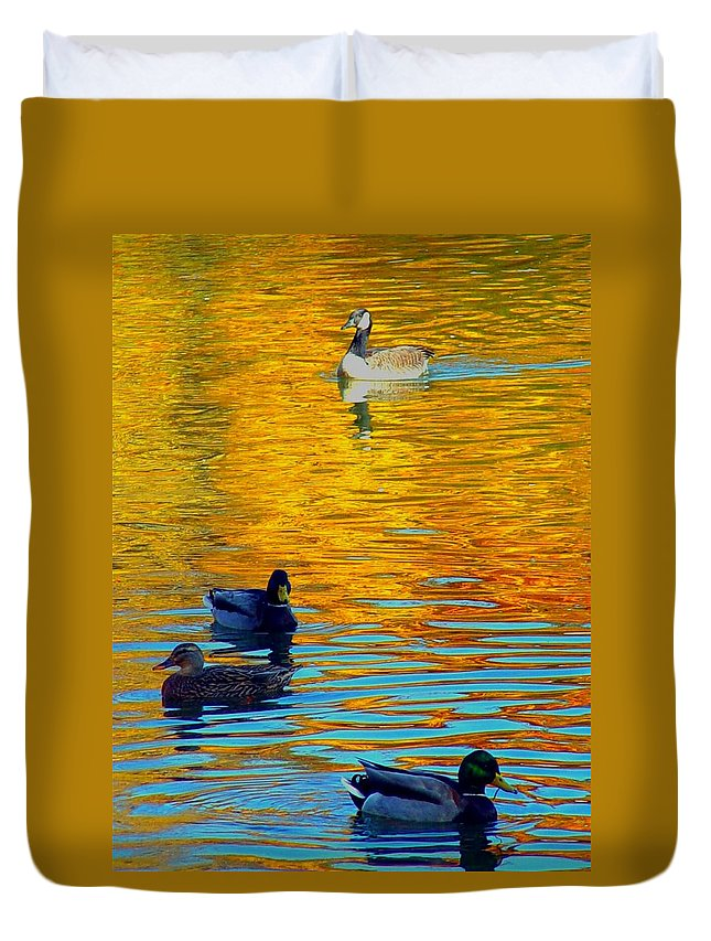Ducks Malard Lake Gold Canada Geese Blue Duvet Cover featuring the photograph Possibilities by Jack Diamond