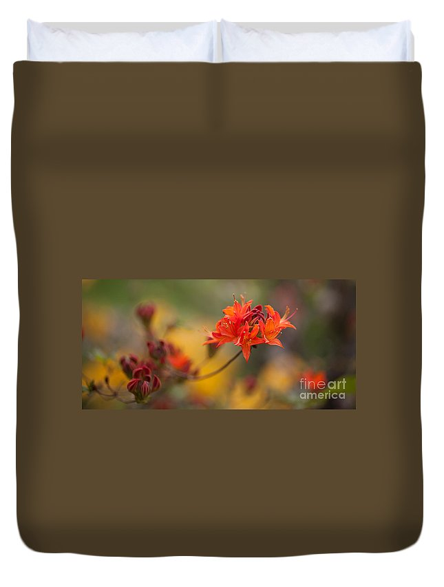 Rhodies Duvet Cover featuring the photograph Potential by Mike Reid