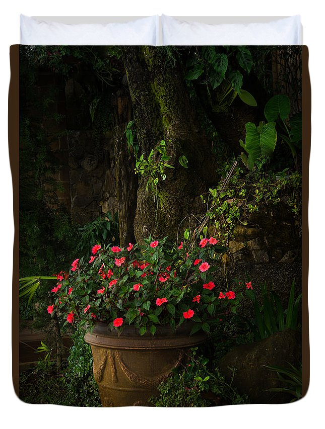 Flowers Duvet Cover featuring the photograph Potted Flowers by Nancy Scofield