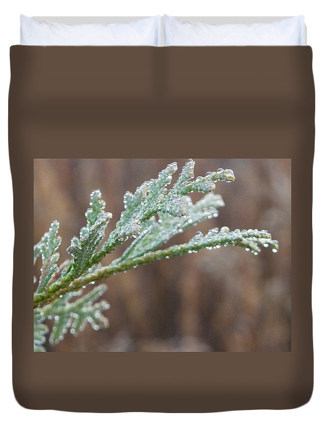 Nature Duvet Cover featuring the photograph Praise by Peggy King