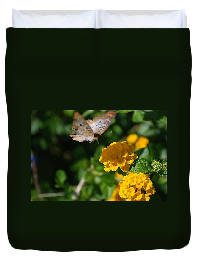 Butterfly Duvet Cover featuring the photograph Pre Landing by Rob Hans