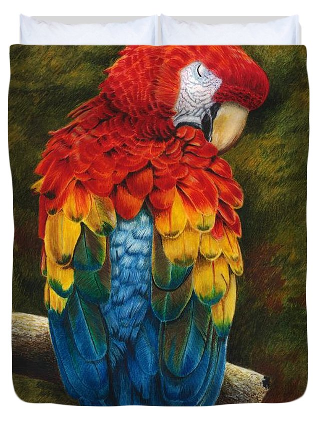 Watercolor Painting Duvet Cover featuring the painting Preening by Tonya Butcher