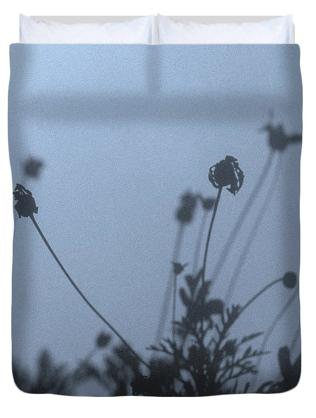 Daisy Bush Duvet Cover featuring the photograph Pressed Daisy Bush Blue by Stan Magnan