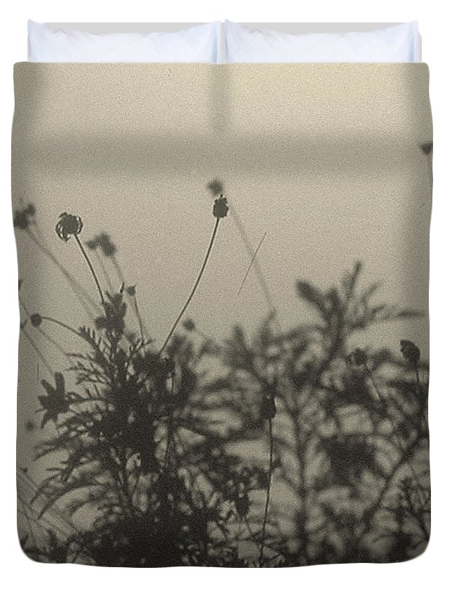 Daisy Bush Duvet Cover featuring the photograph Pressed Daisy Bush Yellow by Stan Magnan
