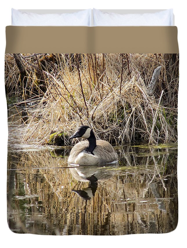Goose Duvet Cover featuring the photograph Pretty Canadian Female by William Tasker