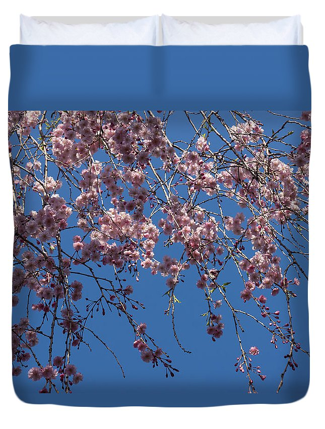 Georgia Mizuleva Duvet Cover featuring the photograph Pretty In Pink - A Flowering Cherry Tree And Blue Spring Sky by Georgia Mizuleva