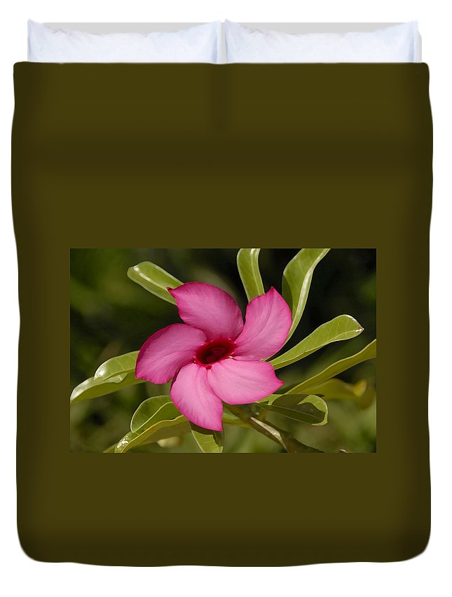 Pink Duvet Cover featuring the painting Pretty In Pink by David Lee Thompson
