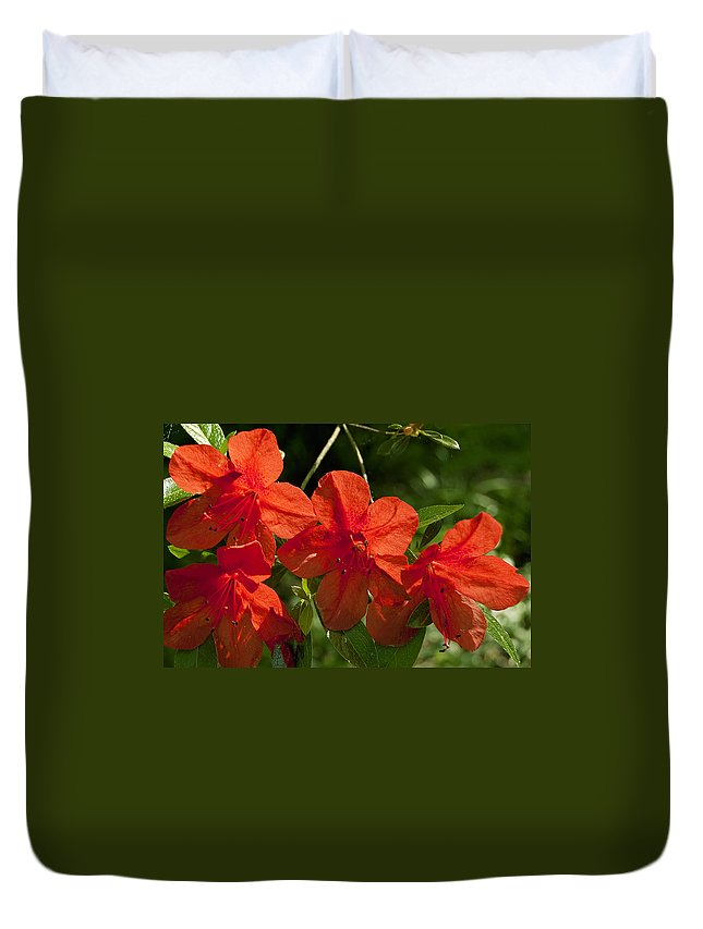 Flowers Duvet Cover featuring the photograph Pretty In Red by Gary Adkins