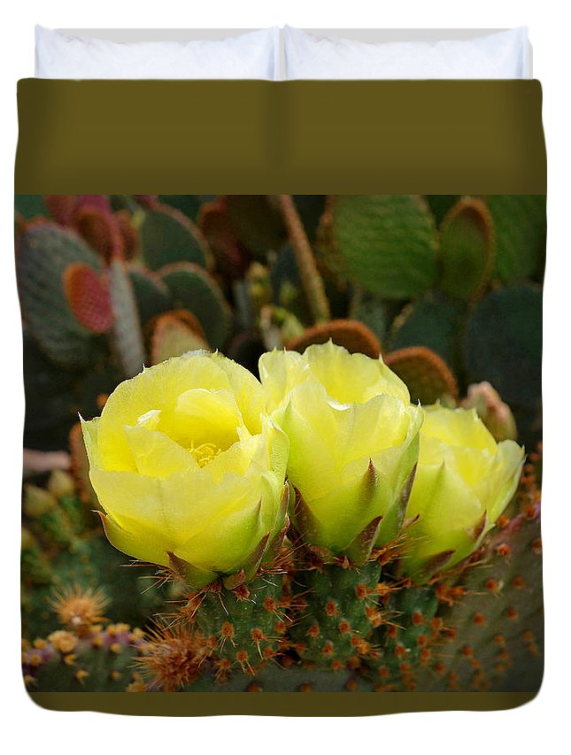 Prickly Pear Duvet Cover featuring the photograph Prickly Pear Trio by Robert Meyers-Lussier
