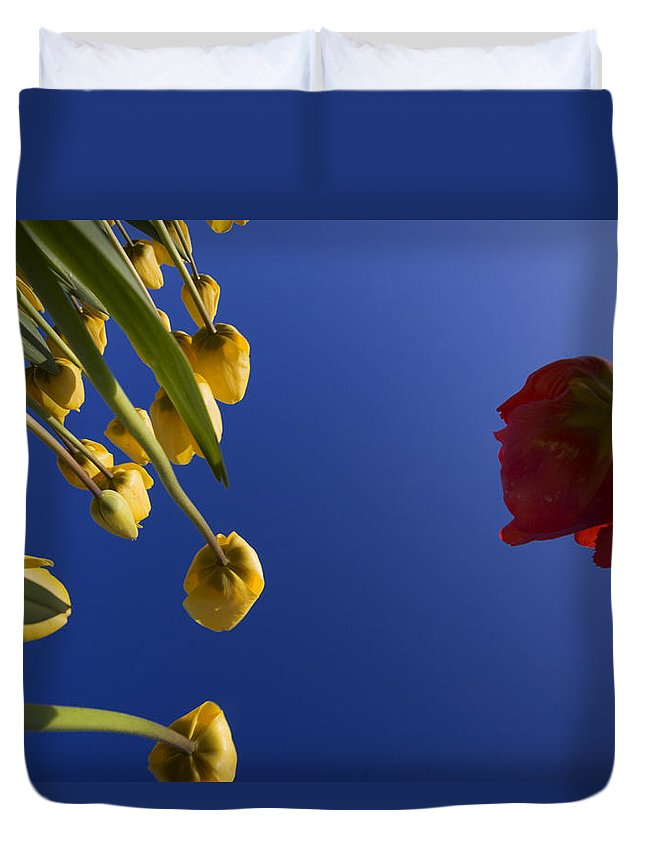 Floral Duvet Cover featuring the photograph Primary Colors by Karen Ulvestad