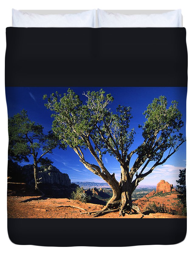 Arizona Duvet Cover featuring the photograph Primary Colors by Randy Oberg