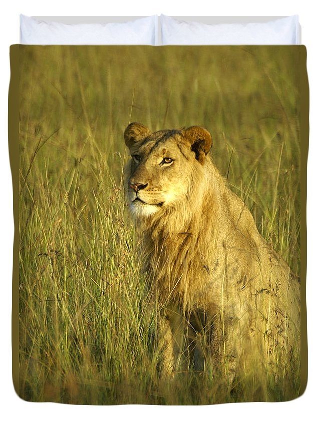 Africa Duvet Cover featuring the photograph Princely Lion by Michele Burgess