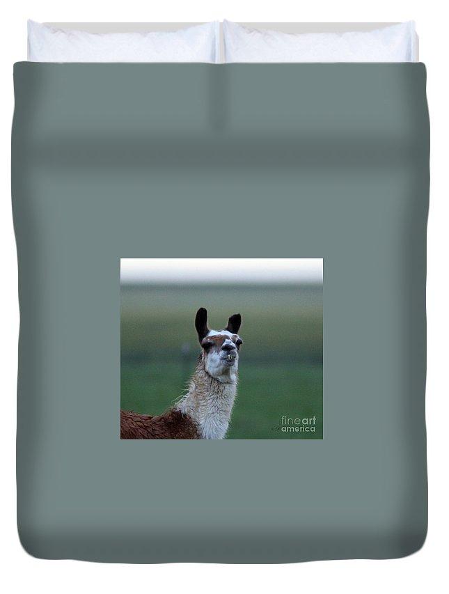 Llama Duvet Cover featuring the photograph Priscilla Closeup #1 by Robert Smitherman