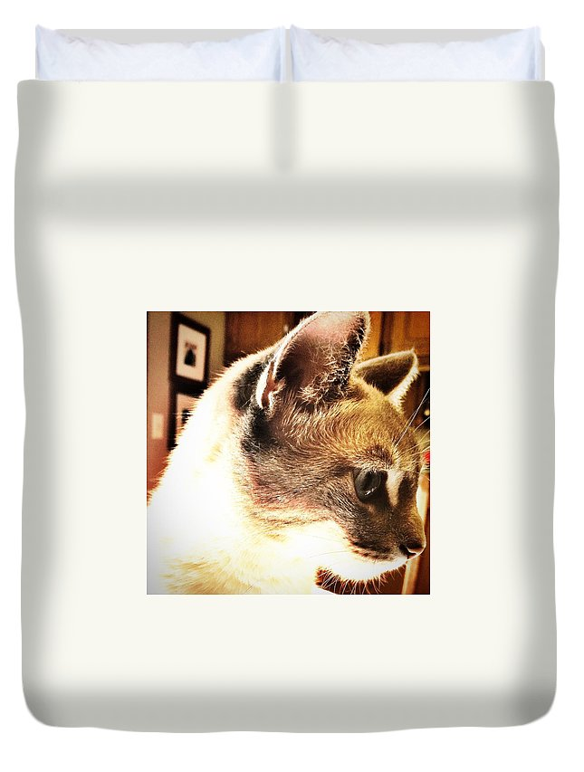Cat Duvet Cover featuring the photograph Profile Of The Cat by Drue DeMatteis
