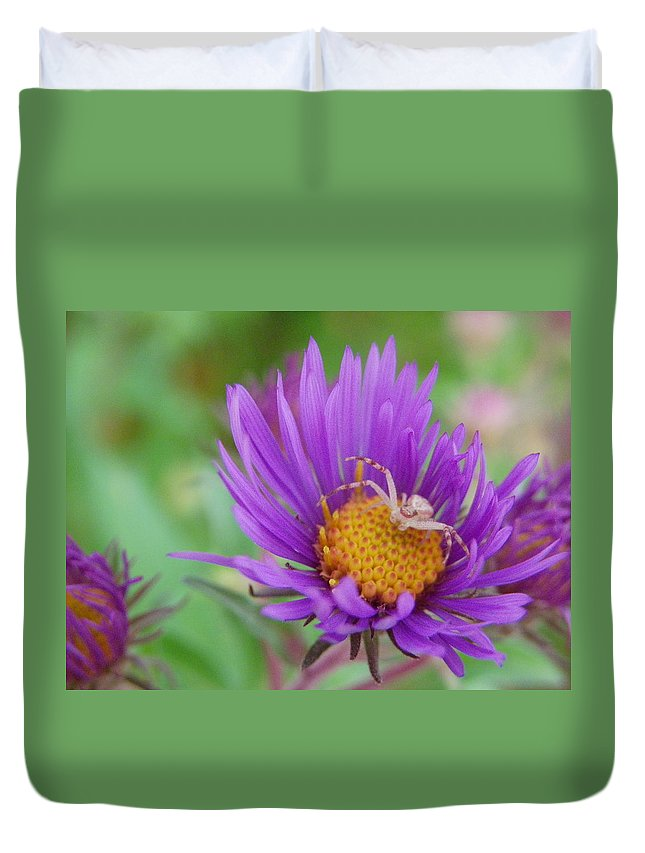 Nature Duvet Cover featuring the photograph Protecting His Turf by Peggy King