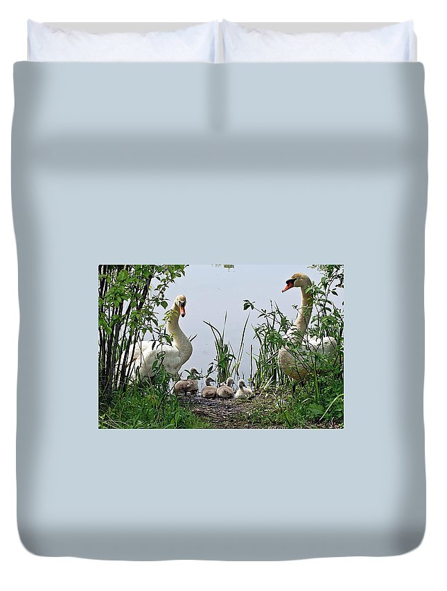 Horn Pond Duvet Cover featuring the photograph Protective Parents by Joe Faherty