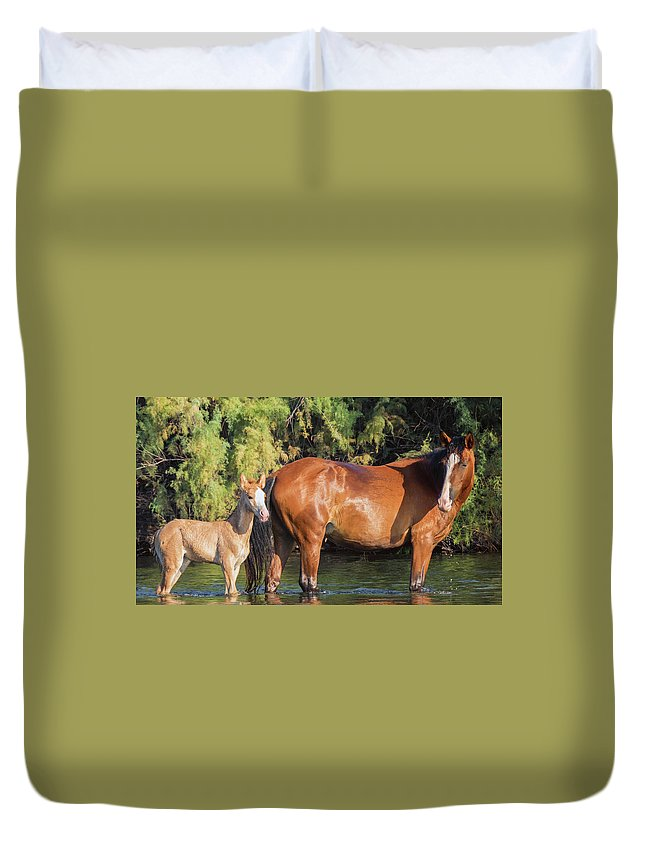 Horse Duvet Cover featuring the photograph Proud Mare by Robin O'Donnell