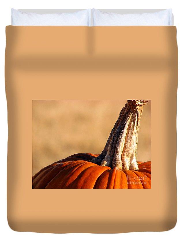 Pumpkins Duvet Cover featuring the photograph Pumpkin by Amanda Barcon