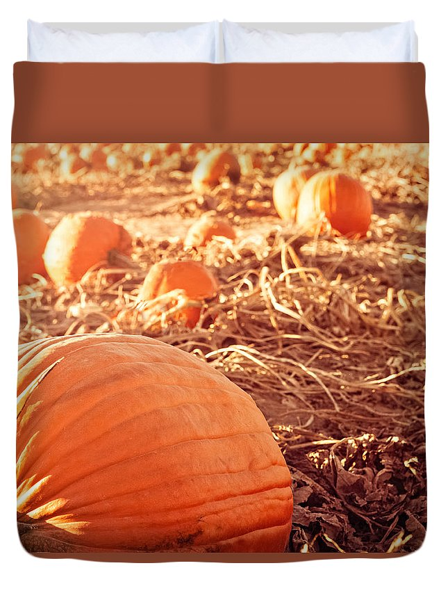 Pumpkin Patch Duvet Cover featuring the photograph Pumpkin Patch by Debi Bishop