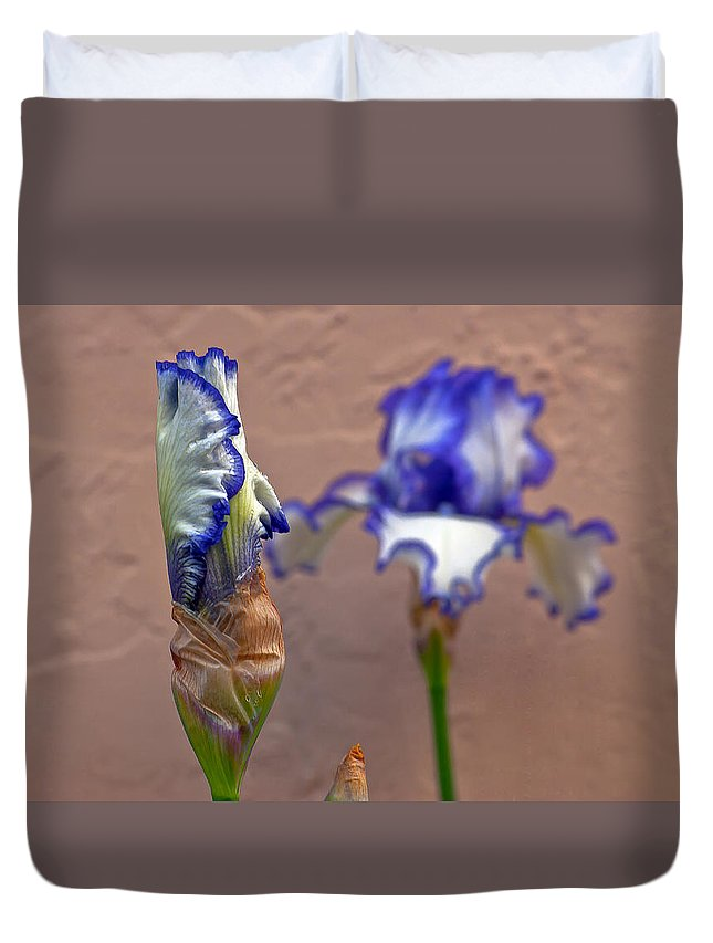 Bearded Duvet Cover featuring the photograph Purple And White Bearded Iris Bud by Emerald Studio Photography