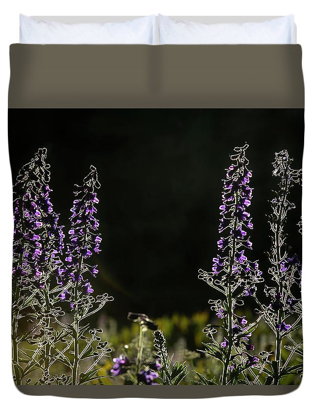 Flowers Duvet Cover featuring the photograph Purple Beauties by Sue Cullumber