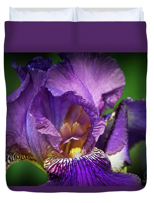 Usa< Colorado Duvet Cover featuring the photograph Purple Beauty by PiperAnne Worcester