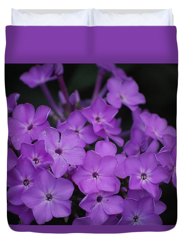 Digital Photo Duvet Cover featuring the photograph Purple Blossoms by David Lane