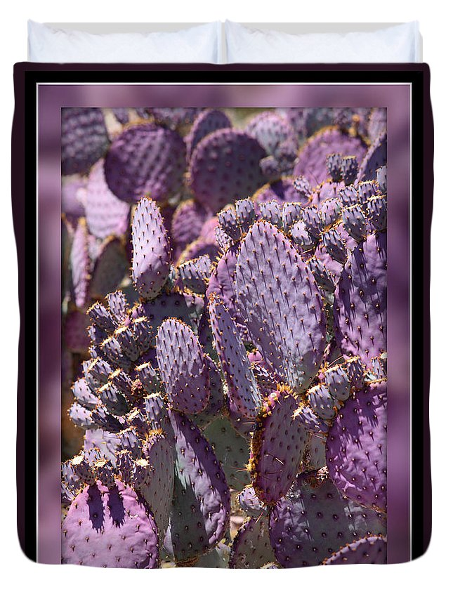 Purple Duvet Cover featuring the photograph Purple Cactus Canvas by Carol Groenen