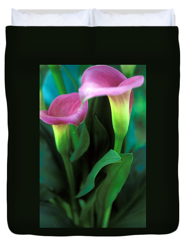 Florals Duvet Cover featuring the photograph Purple Calla Duet by Kathy Yates