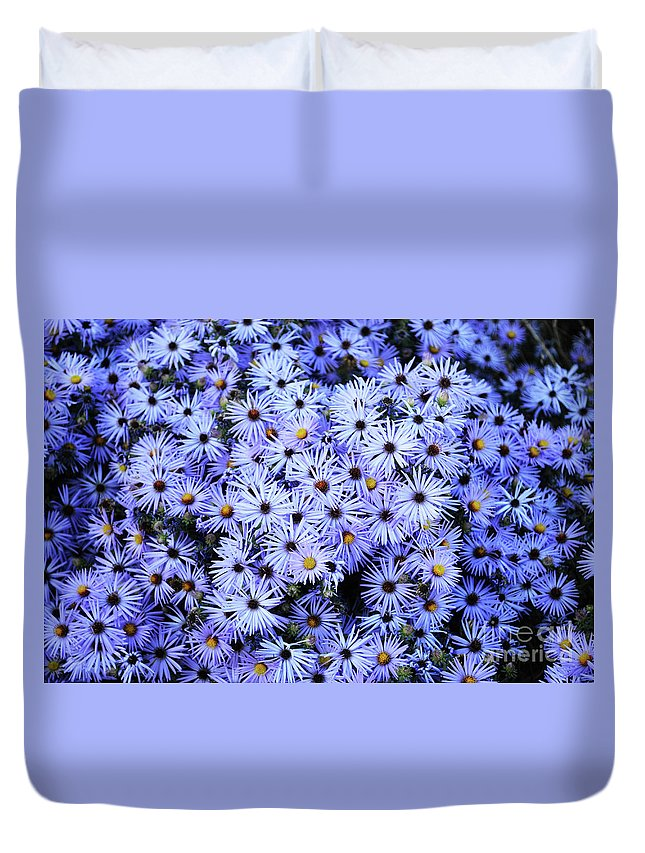 Flower Duvet Cover featuring the photograph Purple Carpet by Des Brownlie
