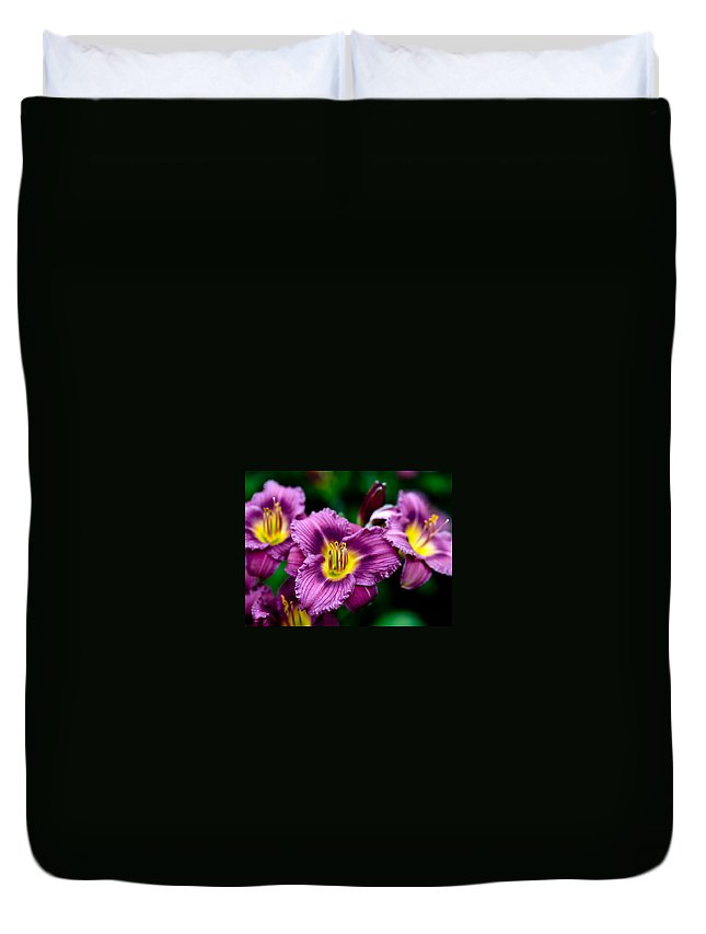 Flower Duvet Cover featuring the photograph Purple Day Lillies by Marilyn Hunt