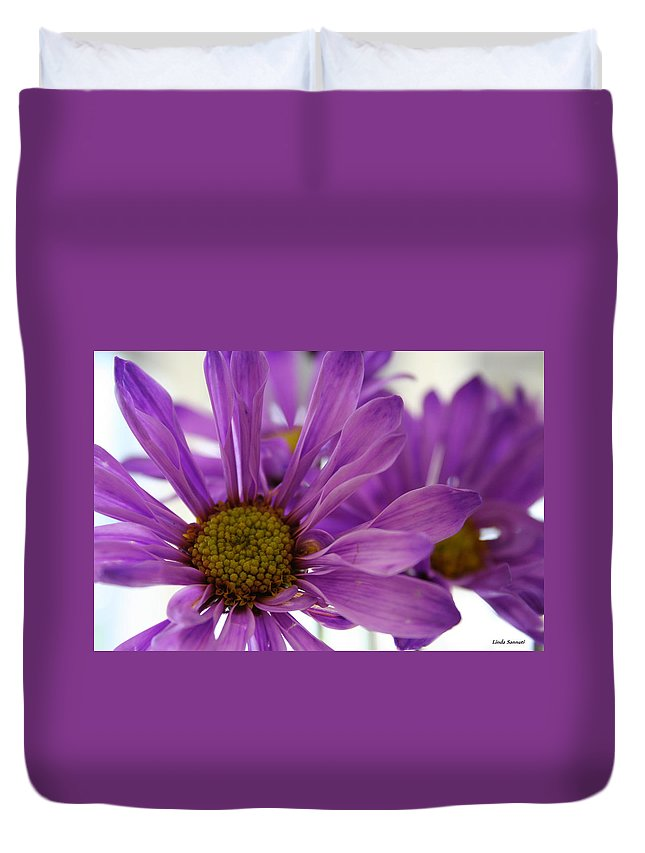 Flowers Purple Macro Daisy Spring Yellow Digital Photography Duvet Cover featuring the photograph Purple Delight by Linda Sannuti