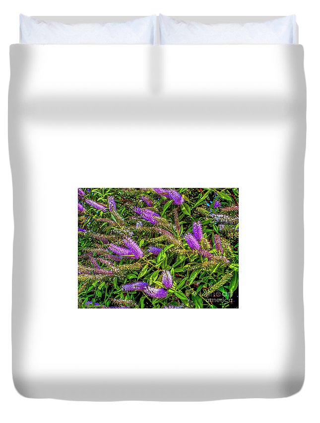 Flowers Duvet Cover featuring the photograph Purple Flowers Of Chiloe by Roberta Bragan