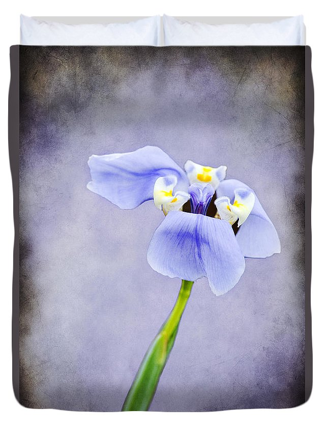 Flower Duvet Cover featuring the photograph Purple Iris by Amy Jackson