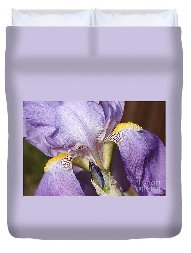 Purple Iris Duvet Cover featuring the photograph Purple Iris Beauty by Carol Groenen