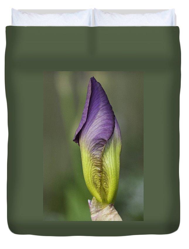 Purple Iris Duvet Cover featuring the photograph Purple Iris Bud by Herman Robert