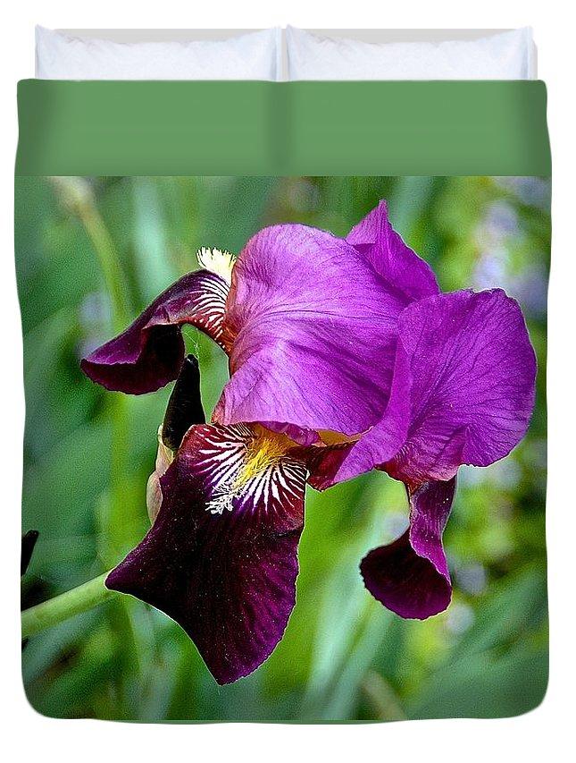 Purple Iris Duvet Cover featuring the photograph Purple Iris by Danielle Sigmon