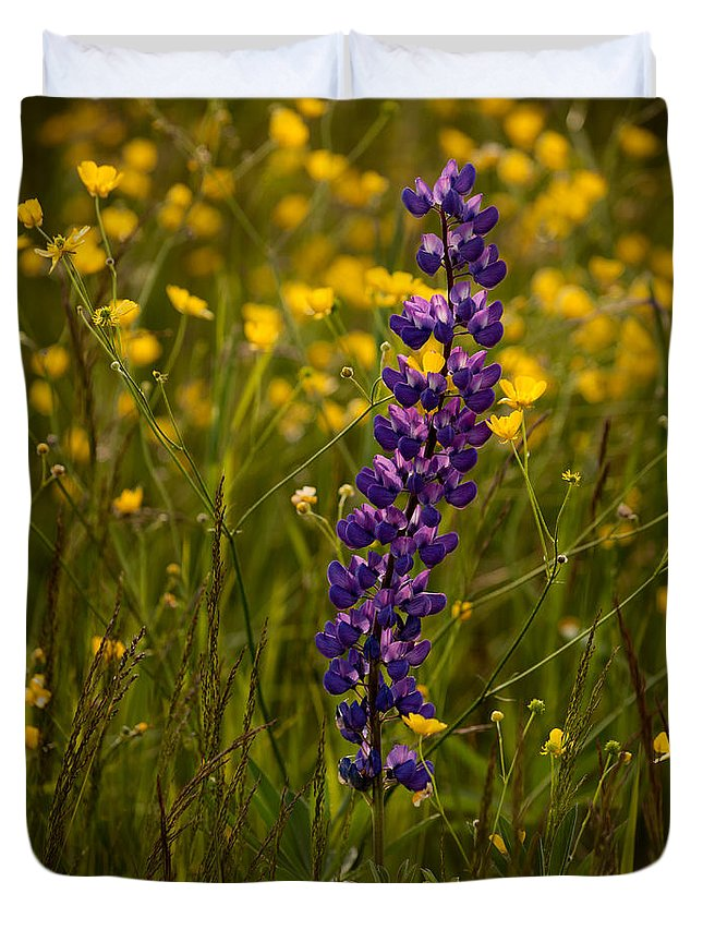 Wildflowers Duvet Cover featuring the photograph Purple Lupin And Buttercups by Irwin Barrett