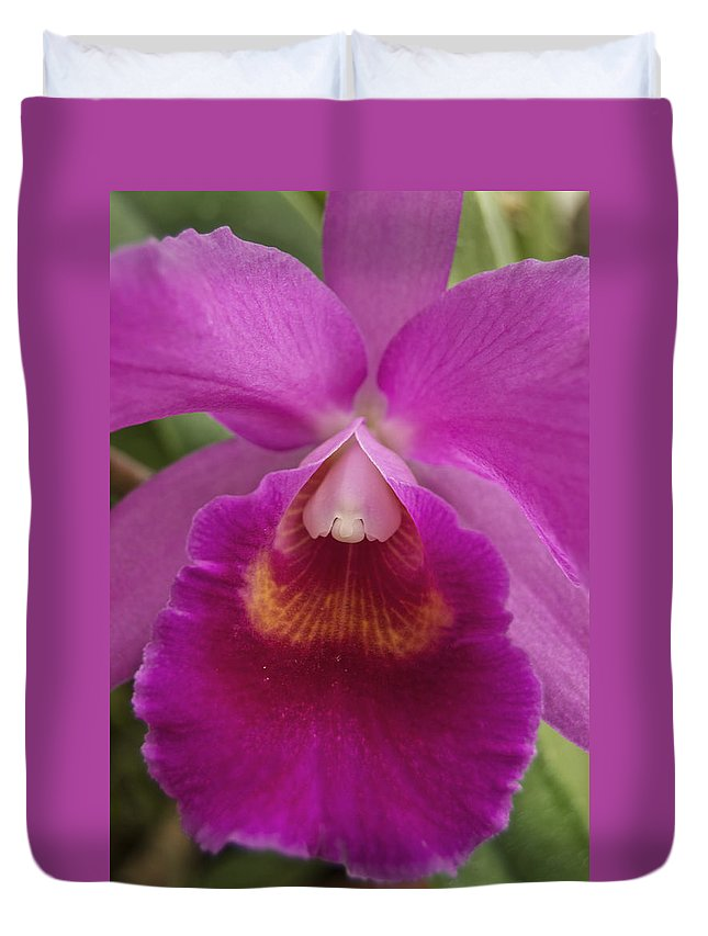 Purple Duvet Cover featuring the photograph Purple Orchid by Michael Peychich