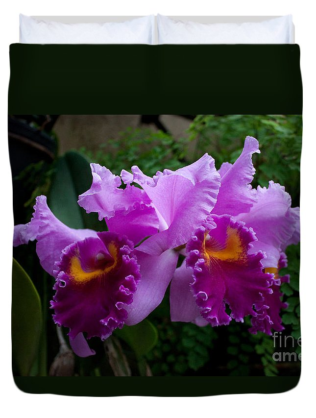 Plant Duvet Cover featuring the photograph Purple Orchids by Robert Sander