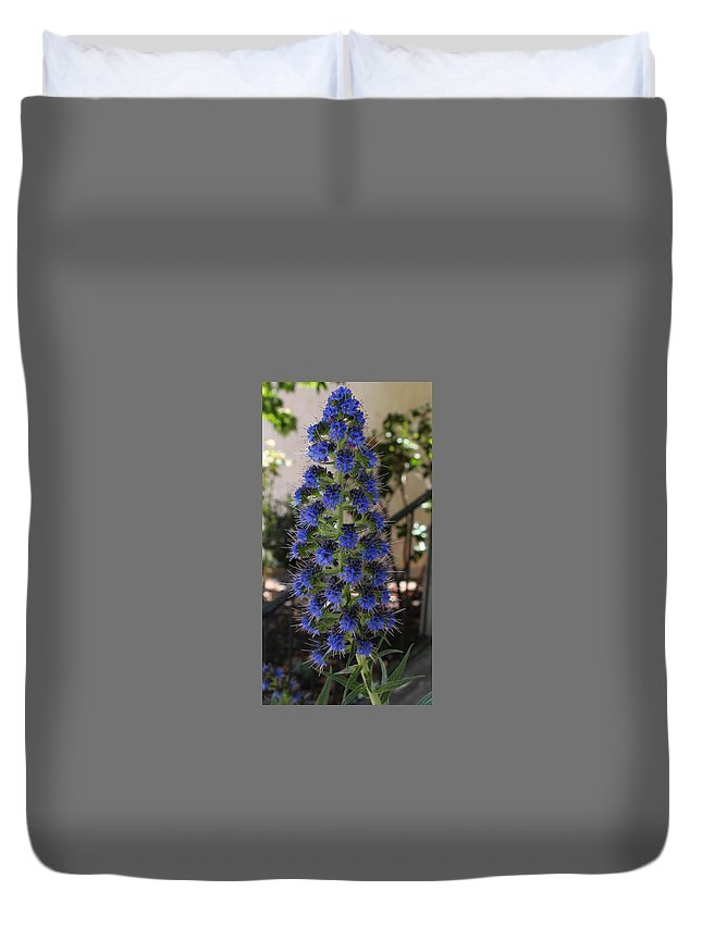 Flowers Duvet Cover featuring the photograph Purple Pain by Patrick Frei
