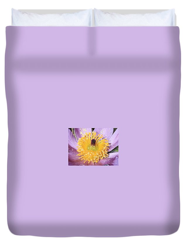 Purple Pasque Flower Duvet Cover featuring the photograph Purple Pasque Flower With Pollen by Carol Groenen