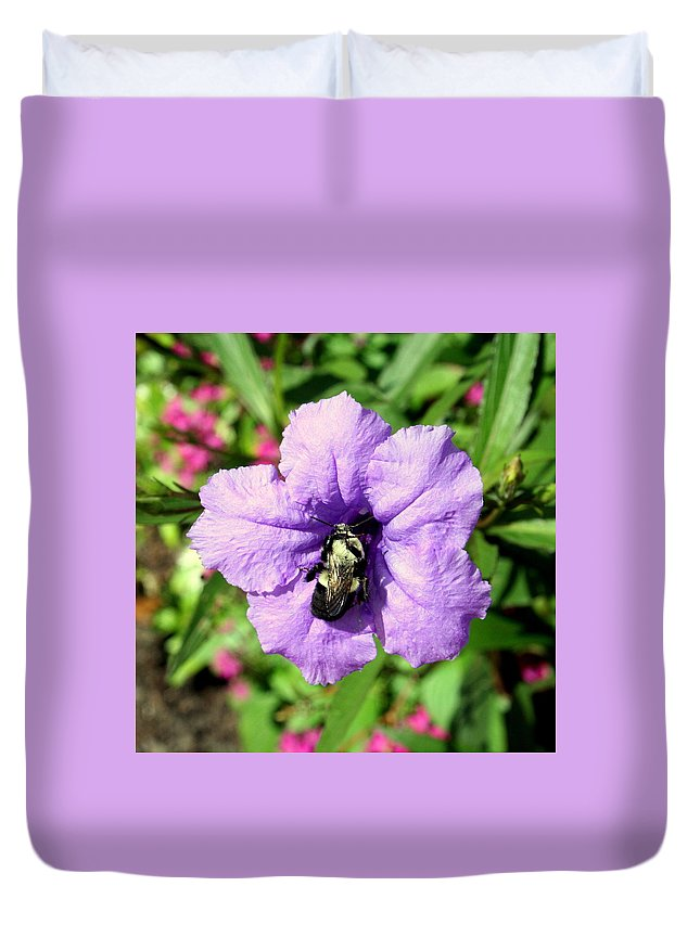 Purple Duvet Cover featuring the photograph Purple Petunia With A Bee by Anita Hiltz