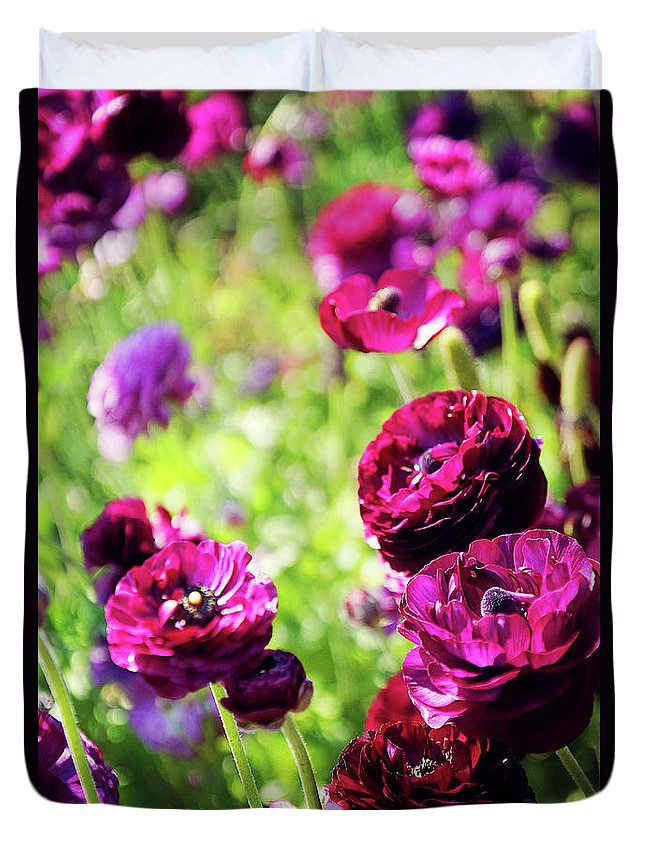 Purple Duvet Cover featuring the photograph Purple Poppies by Megan Swormstedt