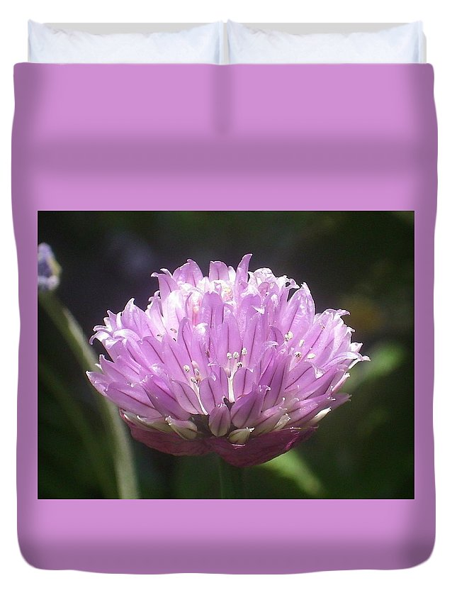 Purple Duvet Cover featuring the photograph Purple Puff by Torie Beck